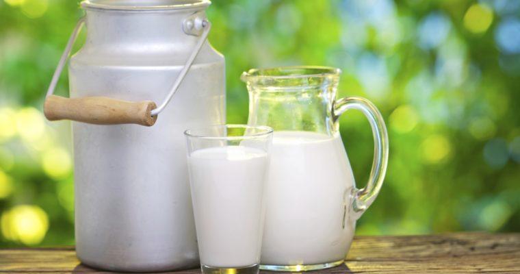 Malghe, latte, formaggio